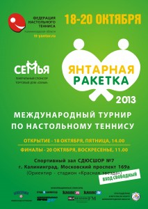Poster2013_5